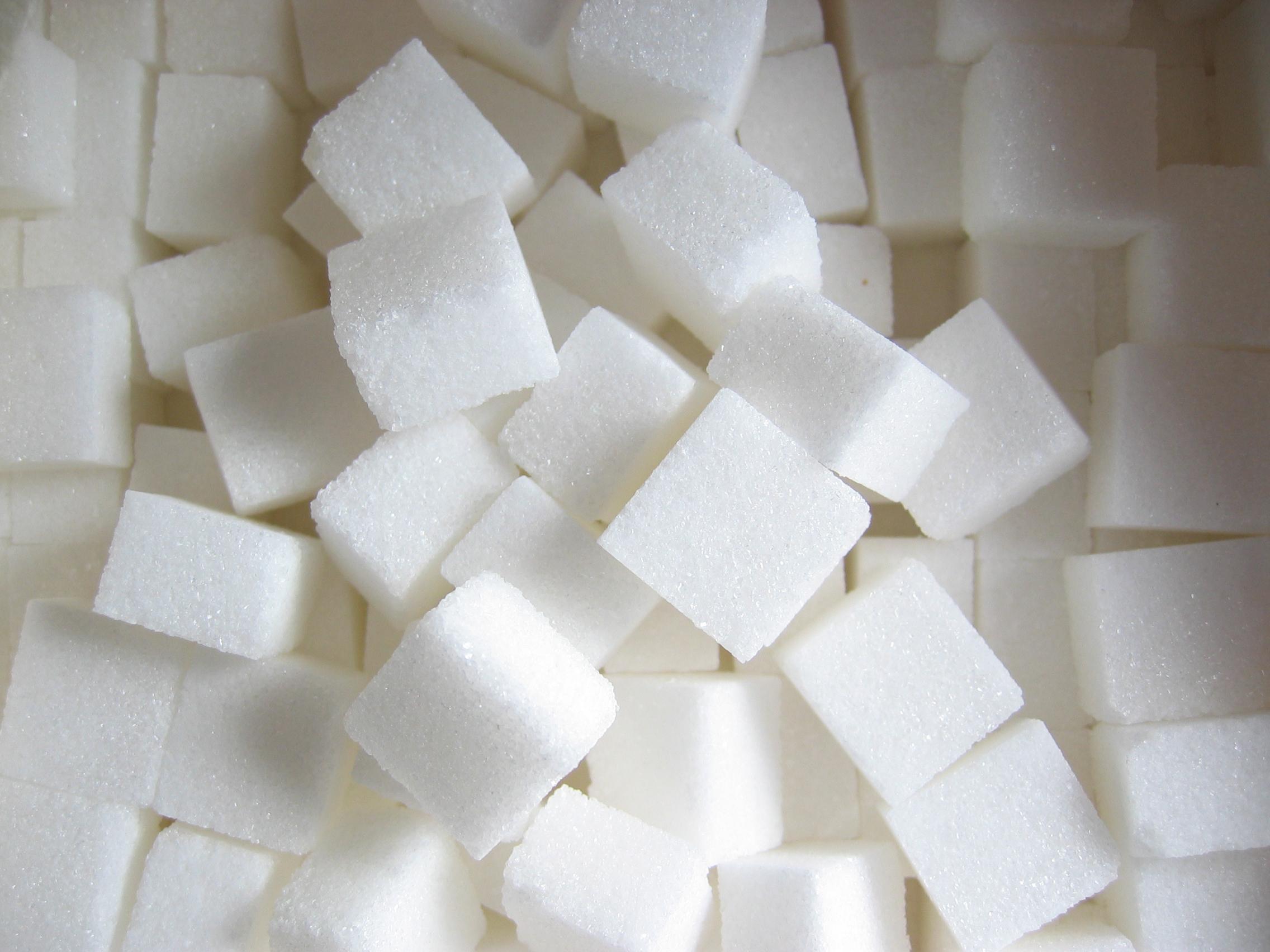 Az elhízás okai: nemcsak a cukor!